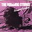 """The Rolling Stones : Beast Of Burden, 7"""" single from Czech Republic - 2011"""
